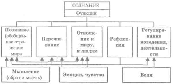 Глава 4 Структура сознания.