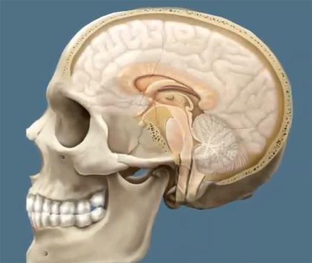 Симптомы сотрясения мозга: как